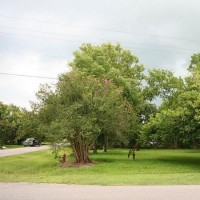 Auction - Residential, For Sale, 5th St, Listing ID 1023, Santa Fe, Texas, United States, 77517,