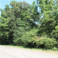 Land - Residential, For Sale, Galleria Oaks Lane, Listing ID 1036, Magnolia, Montgomery, Texas, United States, 77354,