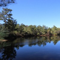 Land - Residential, For Sale, Chuck Wagon Trail, Listing ID 1026, Magnolia, Montgomery, Texas, United States, 77355,